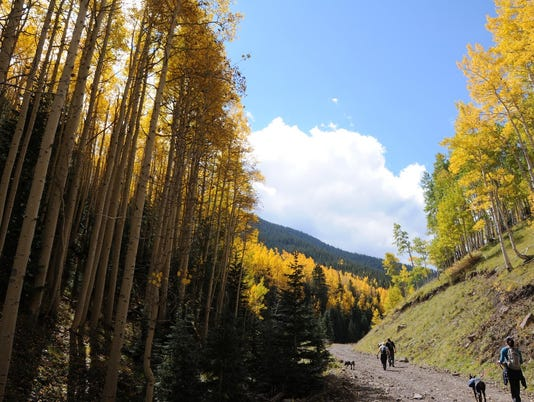 Inner Basin Trail