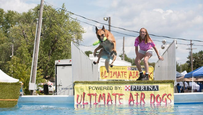 The Ultimate Air Dogs will be performing at the first annual Arizona Get Outdoors Expo this weekend at WestWorld of Scottsdale.