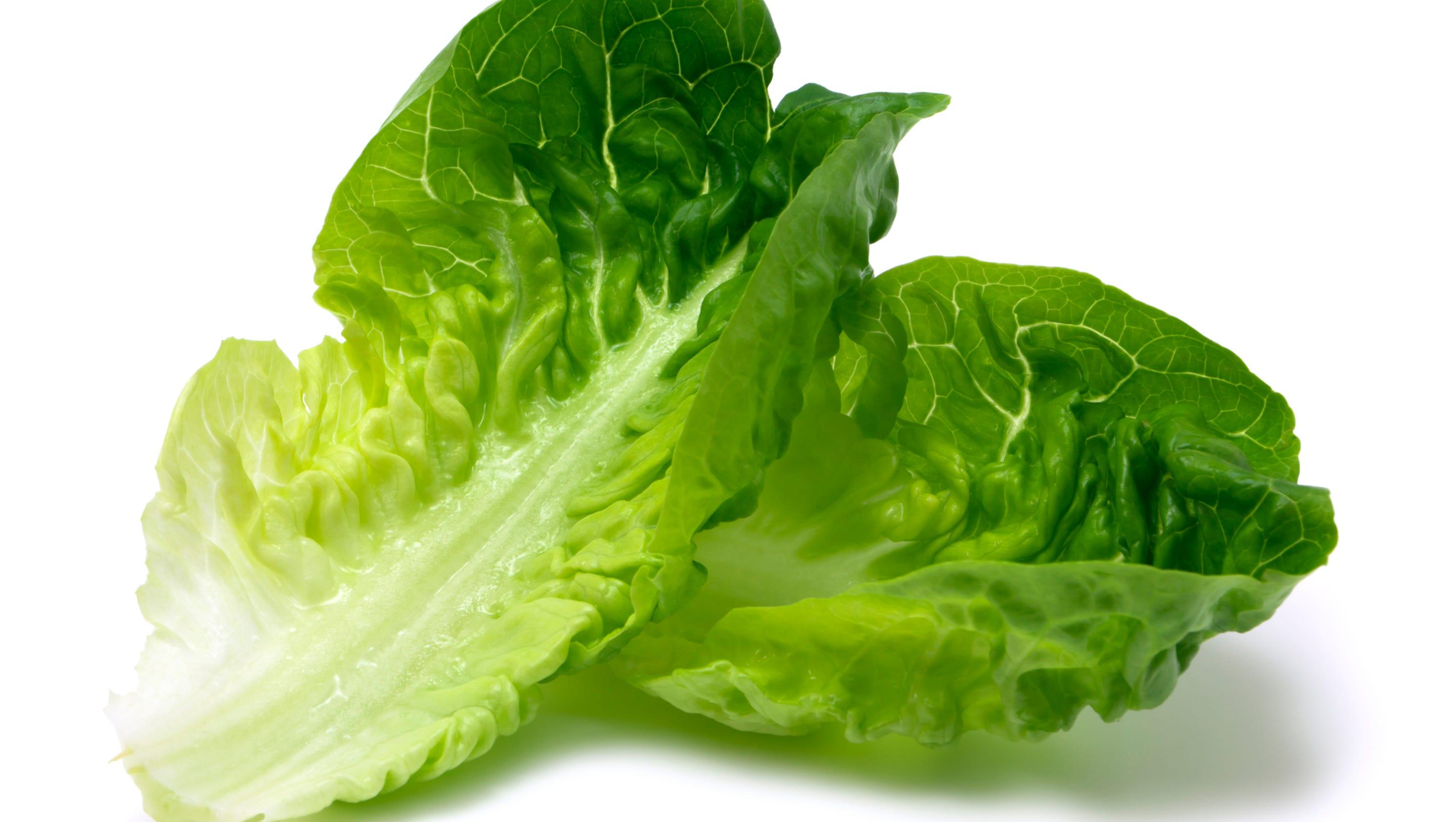 how to eat romaine lettuce