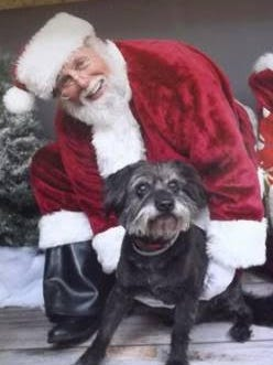Santa will pose with pets at Salem Saturday Market on July 16. Only for July, he'll be in a Hawaiian shirt.