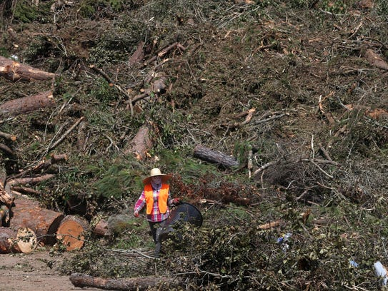 Over 2000 tons of fallen trees and yard waste is piled