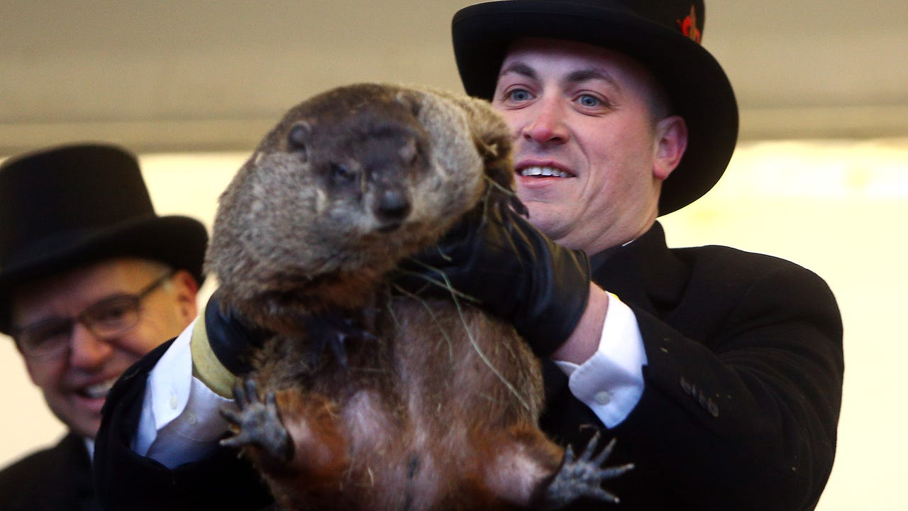 Milltown Mel again makes his 10th annual prediction on Groundhog Day at the American Legion in Milltown, NJ. Mel did not see his shadow this morning, according to folklore,  the spring season will arrive early.