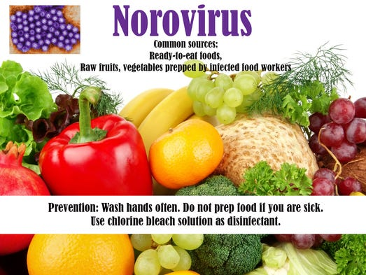 Norovirus survives temperatures up to 140°F and quick
