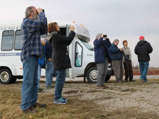 Visitors spot a pair of eagles while touring Ottawa National Wildlife Refuge on Wednesday.