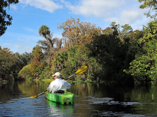 """Silver Springs Kayaking offers two trips: a roundtrip """"Springs Tour"""" — an easy two-mile paddle ride along the Fort King Paddle Trail, or a one-way carefree downstream five-mile paddle extending deeper into the park where you'll see and experience more wildlife and tranquility."""