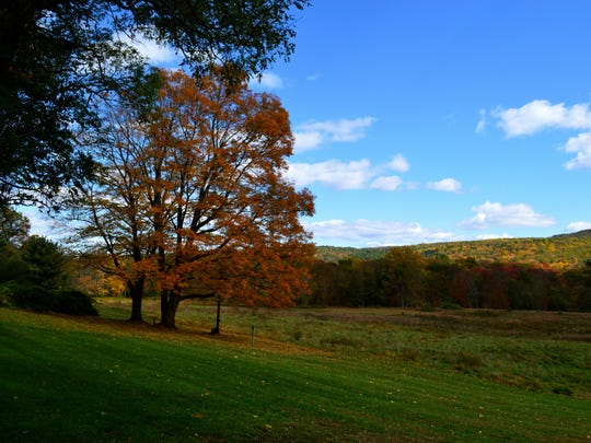 "The Walpack Inn's motto is ""We feed the deer, and people too!"" Deer, wild turkeys and other wildlife add to the views."