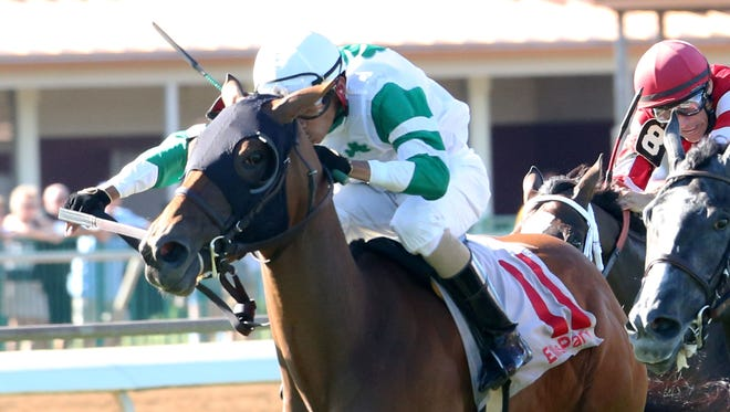 May Lily wins a maiden race Saturday at Ellis Park with with Didiel Osorio as the jockey.