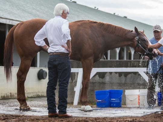 Trainer Bob Baffert takes a look at his Triple Crown