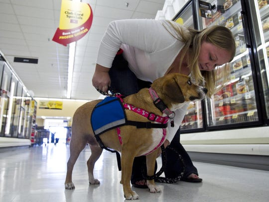 House Bill 2588 would create a fine ofup to $250 for people whomisrepresent their pets as trained service animals.