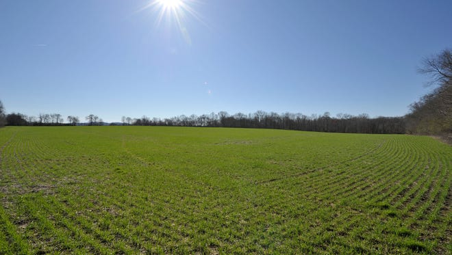 Harding Ventures LLC, whose address matches Ingram Industries, paid $20.35 million for 538 acres in Franklin.