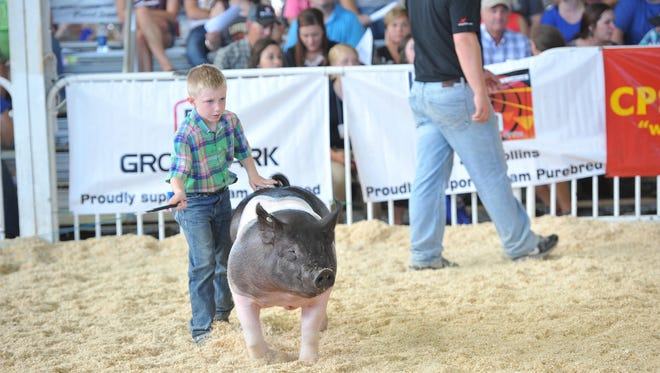 The World Pork Expo Junior National youth hog show and educational events begin on Monday, June 5 and run through the week.