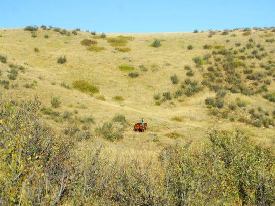 Soapstone Prairie Natural Area is a great horseback