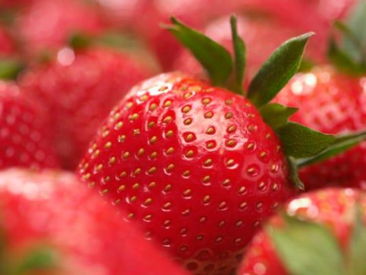 STOCK-Strawberries