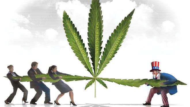 Medical Marijuana Mess