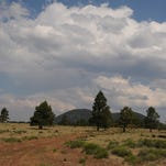Flagstaff hike: Observatory Mesa has lots of options