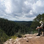 Flagstaff hike: Fay Canyon is a mellow, woodsy walk