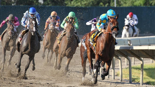 American Pharoah, with Victor Espinoza riding, leads the field around the final turn to victory in the $1,750,000 Grade 1 William Hill Haskell Invitational on Sunday.