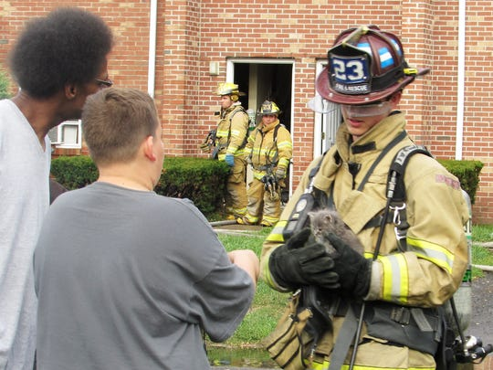 An Elmira firefighter brings out a kitten from one of the apartments affected by Sunday's blaze at Riverview Apartments North.