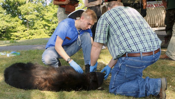 A camper at the Wildlife Leadership Academy helps PA
