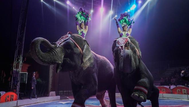 Carson & Barnes Circus elephants.