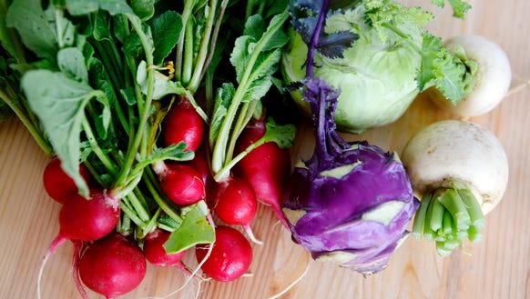 Radishes, kohlrabi and turnips, part of a CSA share