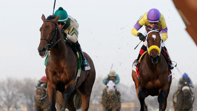 Samraat (outside, ridden by Jose Ortiz) pulled away late from Uncle Sigh in Aqueduct's Grade III Withers on Feb. 1.