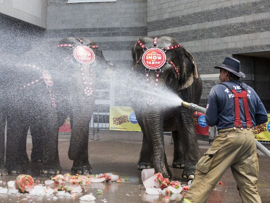 Phoenix Firefighter Jeff Steinbeck, uses water hose to keeps elephants cool as the Ringling Bros. and Barnum & Bailey¨ circus comes into town. The circus runs through Monday.