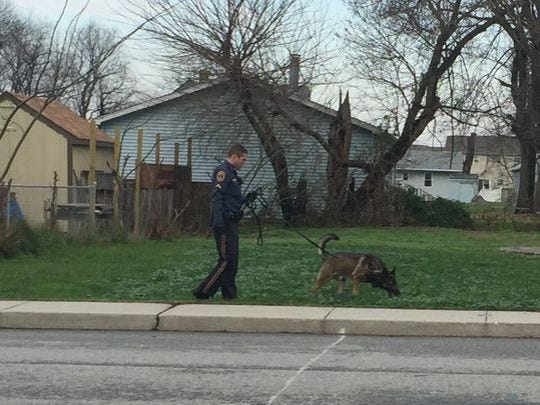 A Middletown police K-9 unit walked along Lake Street Thursday searching for clues in a shooting the night before.