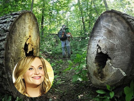 Leslie Knope is Apollo park because of its challenging trails.