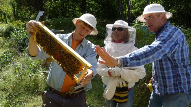 Chris Harp, right, teaches a beekeeping class at HoneybeeLives Apiary in New Paltz with Clifford and Susan Kurz of Rhode Island.