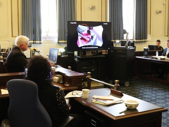 Grant Fredericks, video expert for the prosecution,