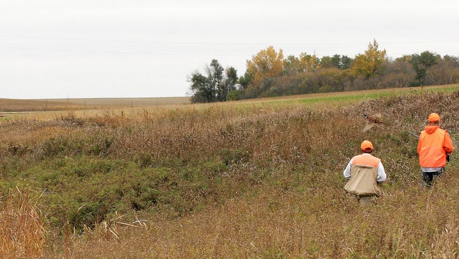A new wildlife management area south of Clearwater will honor Minnesota veterans by providing a place for people to hunt and enjoy nature.