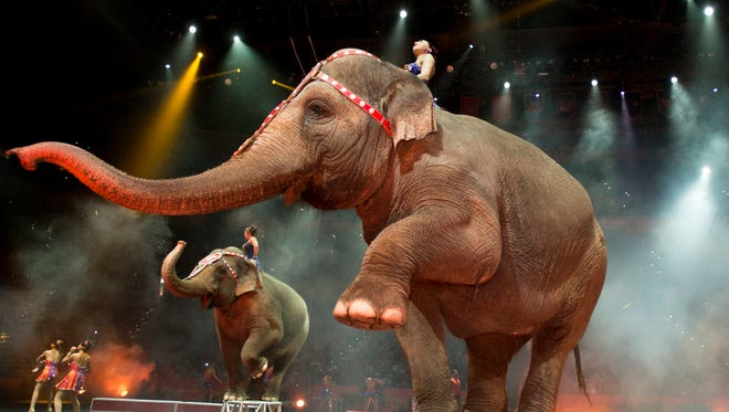 """Ringling Bros. and Barnum and Bailey presents """"Built to Amaze"""""""