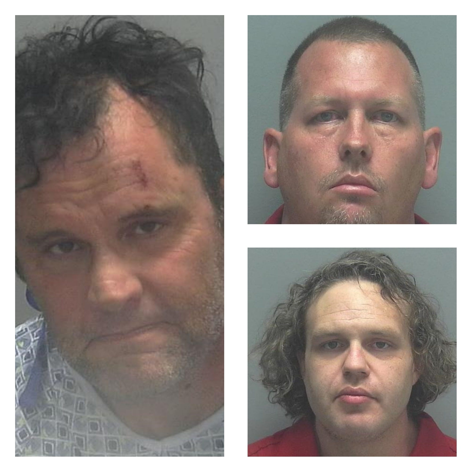 Local Sexually Listed Predators