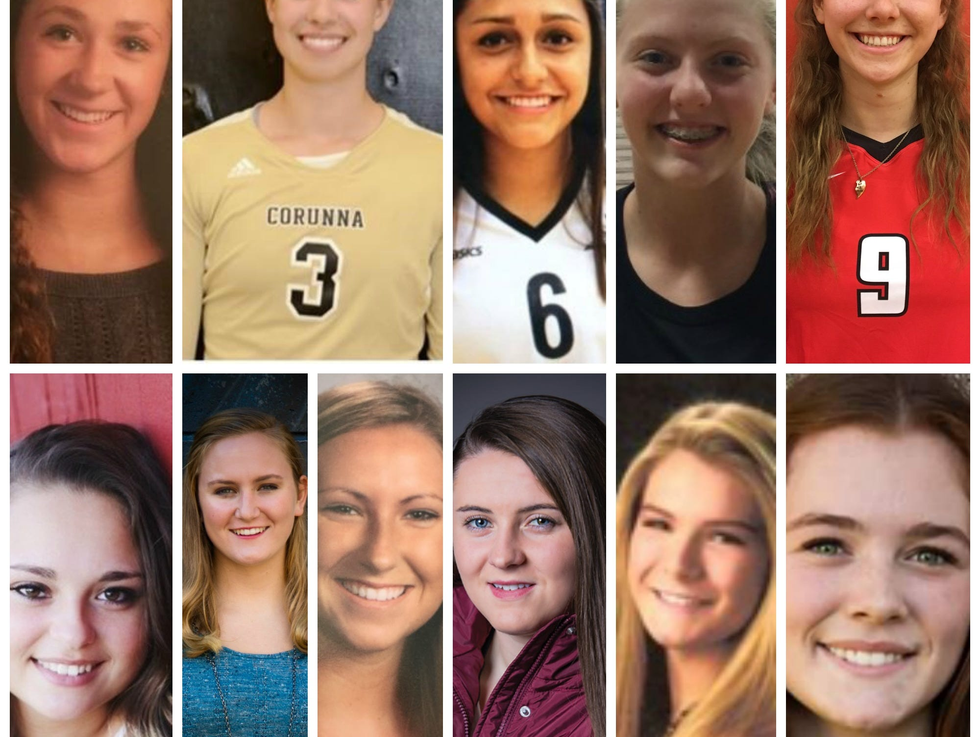 Meet the 2016 LSJ girls high school volleyball Dream Team.