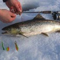 Engberg: Catching trout in the winter