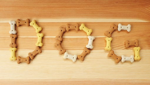 The word DOG spelled out in dog treats