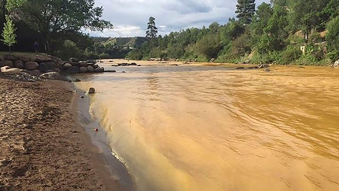 The Animas River runs yellow with toxin-tainted wastewater that was accidentally released from the abanoned Gold King Mine near Durango, Colorado.