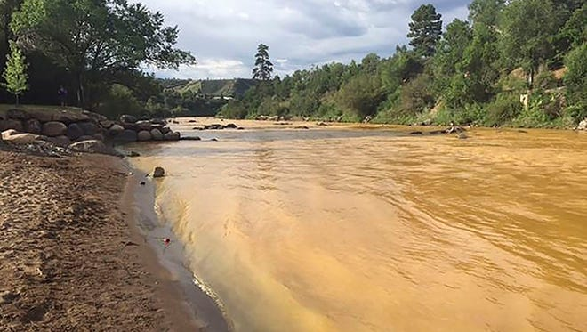 The Animas River runs yellow with toxin-tainted wastewater that was accidentally released from the abandoned Gold King Mine near Durango, Colorado.