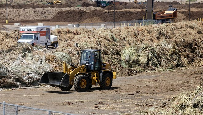 Piles of palm fronds at 27th Avenue Transfer Station will be reworked into feed for livestock as Phoenix moves to be more sustainable. The city hopes to divert 34,000 tons of palm fronds from landfills each year.