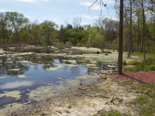 The pond behind Blue Heron Pond adult foster care facility