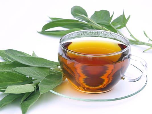 Tee Salbei - tea sage 01