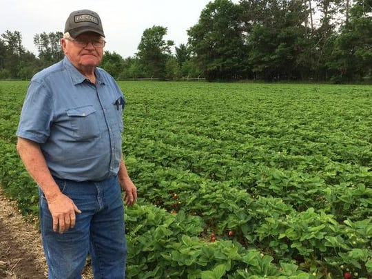 Harold Altenburg has been growing strawberries for 50 years.