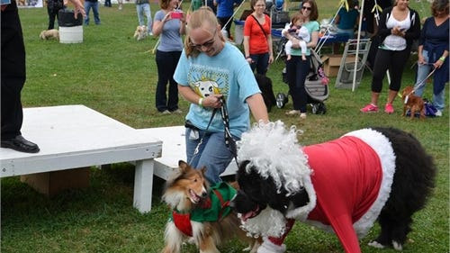 Members of Team Charlie Brown participating in the costume contest at the Dutchess County SPCA's Petwalk.