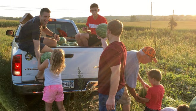 Jay Eury, former coordinator for the Franklin County Gleaning Project, gleans watermelon with several volunteers at the Country Creek Produce Farm in Chambersburg. The program gathers leftover produce farmers' can't use, and gives it to residents who can't afford fresh fruits and vegetables.