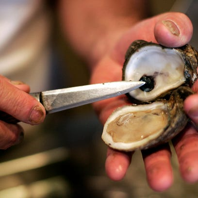 In this Oct. 23, 2009, photo, Julius Steel displays a shucked raw oyster at Pascal's Manale restaurant in New Orleans.  (AP Photo/Patrick Semansky)