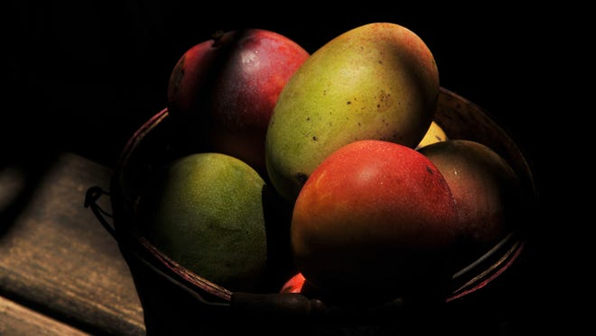 Mangoes are abundant right now. If you're looking to buy local fruit, just take a drive along South Tropical Trail on Merritt Island.