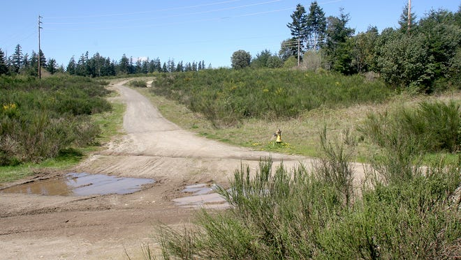 A hearing examiner has approved a 110-lot subdivision in Bremerton's West Hills.