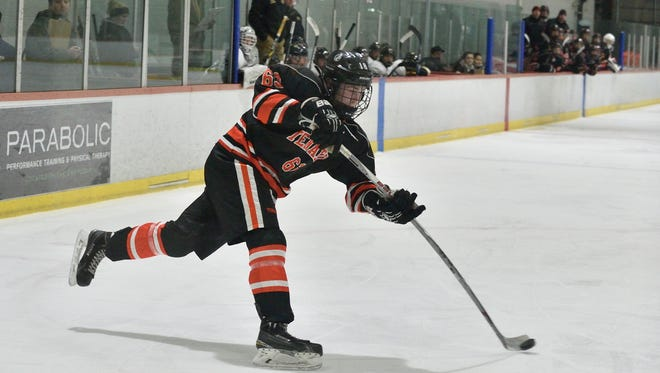Tenafly/Cresskill's Matt Brown was selected to the first team All-Bergen County ice hockey team.