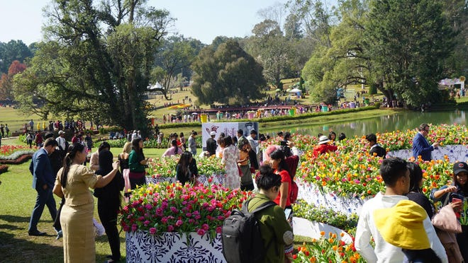 Tulip Time organizers are excited about the new Tulip Immersion Garden, which will be available throughout the duration of the festival at Dunton Park, 209 Howard Ave. in Holland. Pictured, a similar exhibit in China.